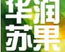 华润苏果睢宁店招聘信息